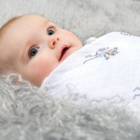 Classic Swaddle Jungle Jam by aden and anais Baby
