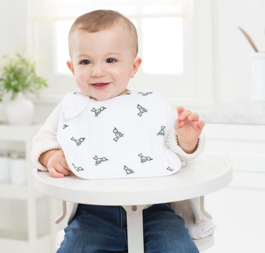 Aden and Anais Jungle Jam Snap Bib